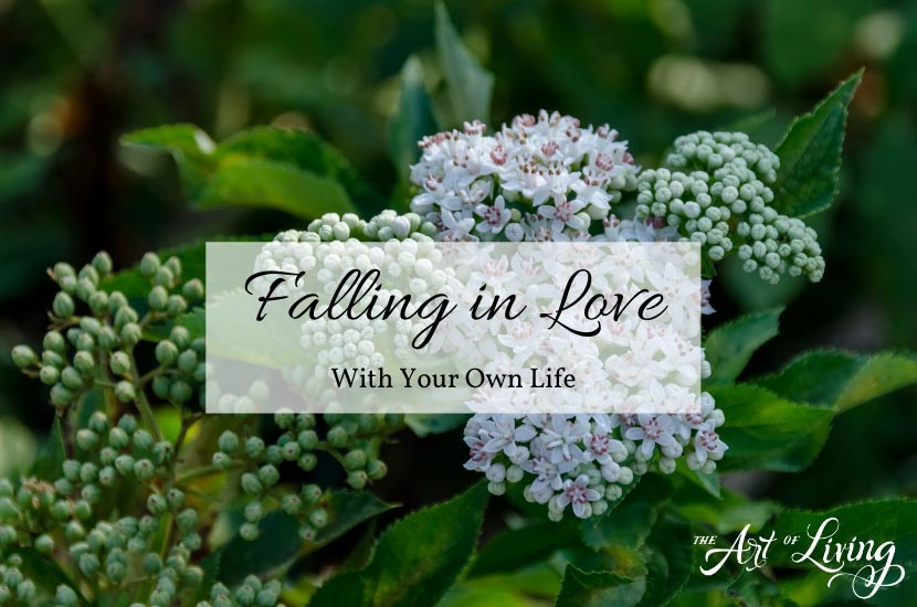 Falling in Love – With Your Own Life