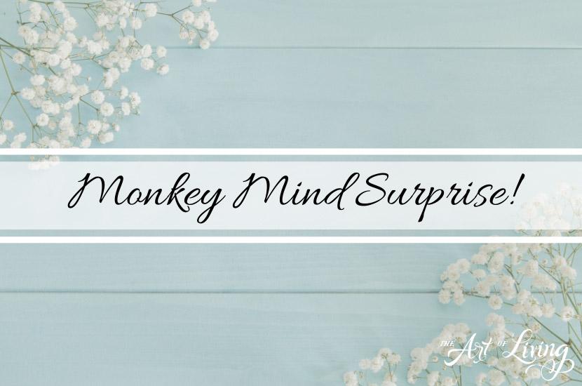 Monkey, Mind Surprise!